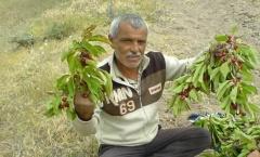 Vefat Mustafa Sarptaş